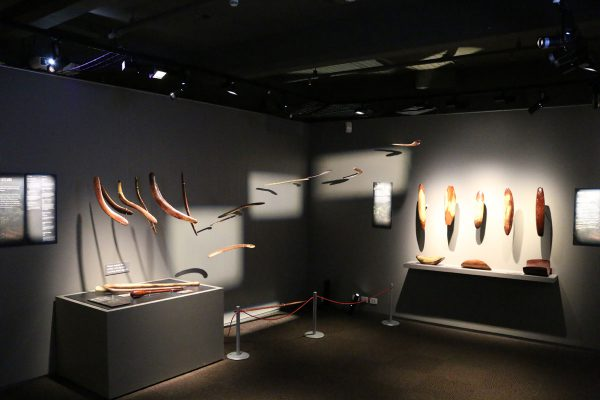 SA Museum Injects Colour into Displays with PROLIGHTS Eclipse